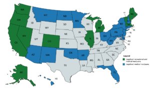 Florida: What will 2020 bring for Cannabis?